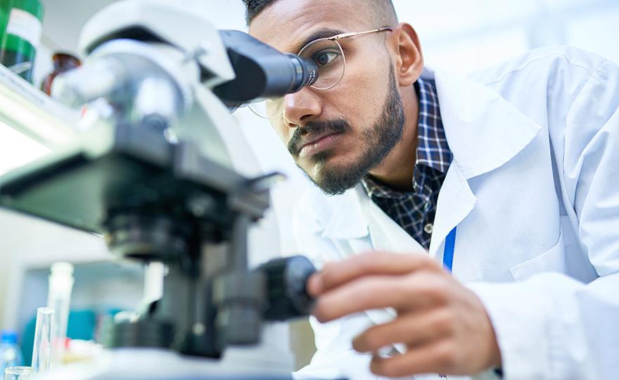 Scientist performance additives elastomer compounds