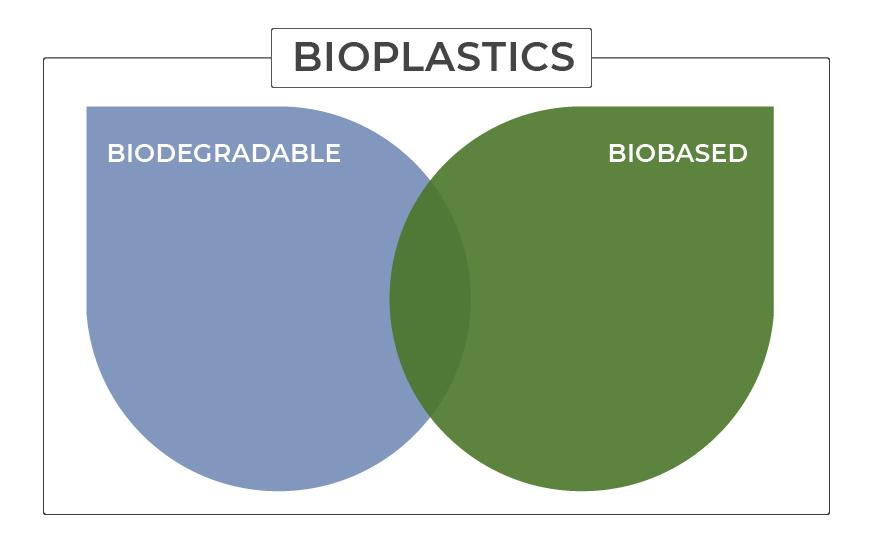 What are Bioplastics