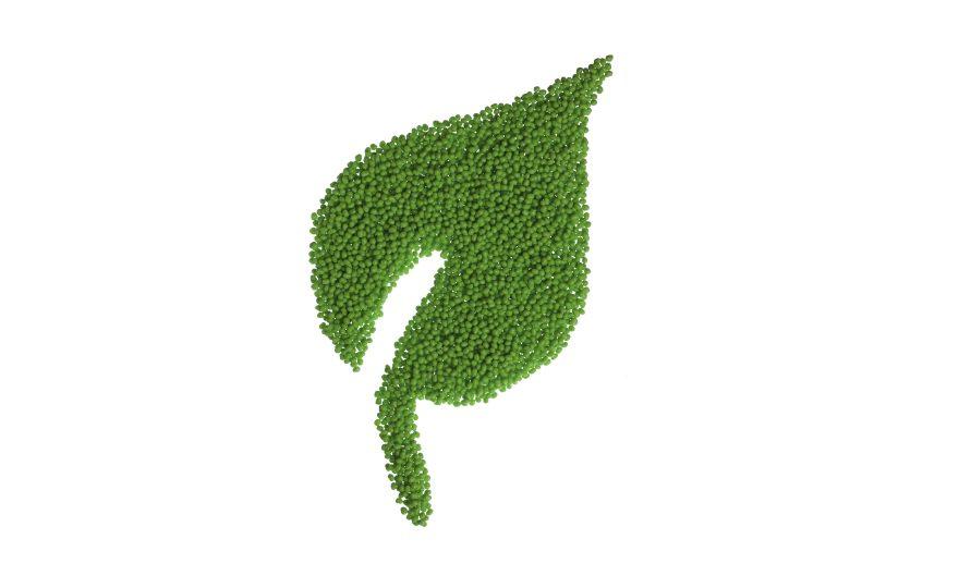Biobased Thermoplastic Elastomers